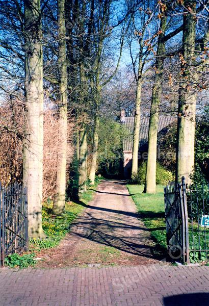 F0072 <br /> Vanaf de Hoofdstraat een blik op de laan met de statige bomen en de bungalow, bewoond door de heer Schinck. Foto: 1995.
