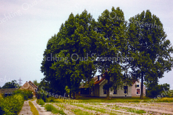 F0063 <br /> De boerderij van Wim van Rijn is circa 300 jaar oud. Volgens het boekje van J.Thijs jr. Sassenheim omstreeks 1813 woonde hier de bouwman Cornelis Schramade. In 1913 werd de boerderij bewoond door de fam. Rotteveel. De huidige bewoner, Wim van Rijn heeft het pand van binnen en buiten prachtig laten opknappen. Hij stamt ook uit een bekend boerengeslacht uit deze streek. Foto: 1979.