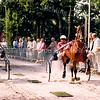 F2550<br /> Harddraverij op de Teijlingerlaan. Foto: 2003.