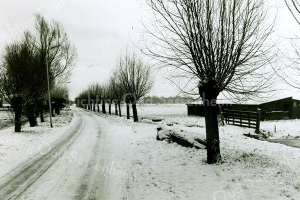 F2456<br /> De Menneweg in wintertooi. Foto:2000