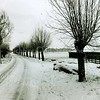 F2456<br /> De Menneweg in wintertooi. Foto:2000