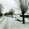 F2456<br /> De Menneweg in wintertooi. Het is het laatste stuk van de Menneweg richting de Eendenkooi van Warmond.Foto:2000.