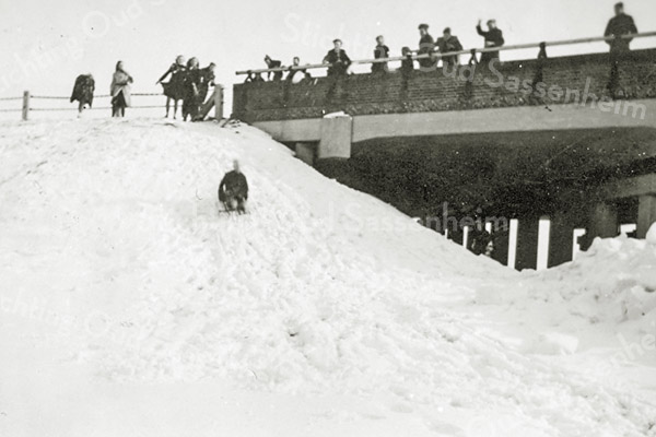 F2991<br /> Sneeuwpret bij de Sassemerbrug.
