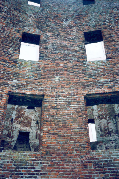F0049 <br /> Interieur van de ruïne van Teijlingen. De ruïne bestaat uit een ringmuur met woontoren en een overblijfsel van de gracht. Gebouwd in de 13e eeuw als waterburcht met voorburcht, waar omheen een gracht met valbrug. Jacoba van Beieren overleed hier in 1436. Het slot werd verwoest in 1573, maar werd in het begin van de 17de eeuw weer hersteld. Het werd toen een gevangenis en er werd een woonhuis bij gebouwd. In de Franse tijd werden alle gebouwen afgebroken, behalve de middeleeuwse burcht. Foto: 1993.