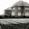 F2354<br /> Vooraan zien we huize Sursum Corda ('verheft uw harten'), gebouwd voor dhr. Le Clercq in 1926, daarna bewoond door de families Philippo en Snaterse. Later kwam het huis in bezit van een kleinzoon van Anton le Clercq. In 2015 kreeg het huis een nieuwe eigenaar. <br /> Het huis erachter is in aanbouw (1928). De eerste bewoner is ene Verschoor. Later is de woning bewoond door de fam. Jonkman. Dhr. Jonkman was gladiolenkweker en schijnt één van de gladiolensoorten de naam 'Silentium' gegeven te hebben; het huis heeft destijds diezelfde naam gekregen. In dit huis hebben drie generaties 'Jonkmannen' gewoond. Daarna werd het pand door de fam. W. Mantel bewoond. Foto: 1928.