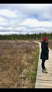 Photo 2018-10-21, H Stepien 3 03 34 PM