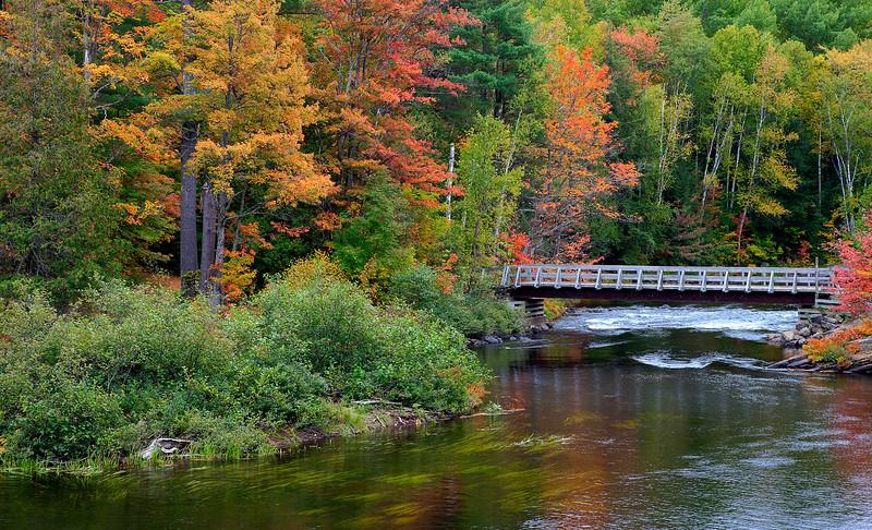 Oxtongue River - Oxtongue Provincial Park
