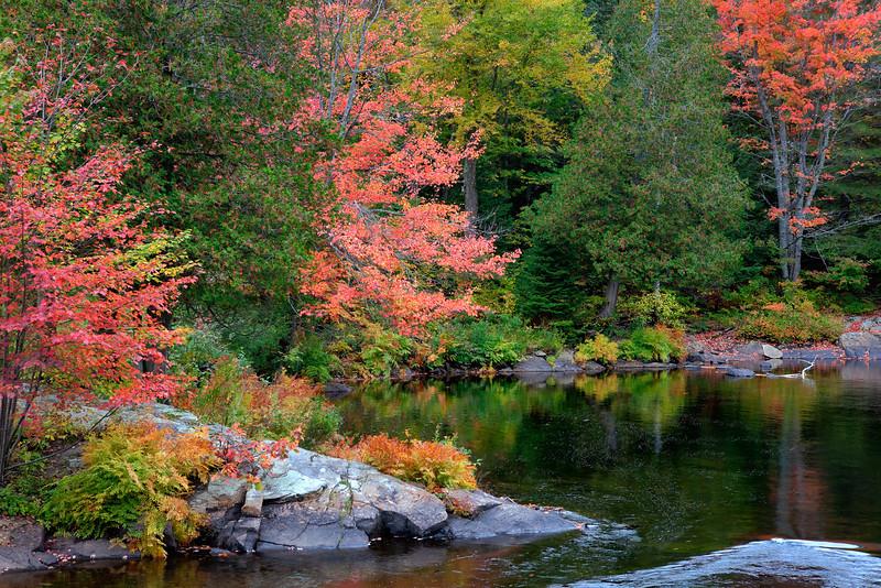 Oxtongue River<br /> Algonguin Park Area