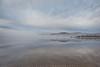 Lake Fog (#0512)