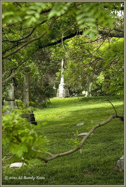 Spring Grove Cemetery, in Cincinnati OH<br /> (2008-00823 )