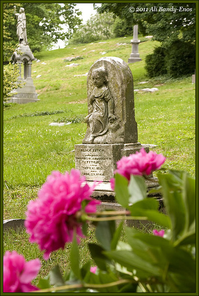 Spring Grove Cemetery, in Cincinnati OH<br /> (2008-00845a  )