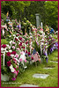 Spring Grove Cemetery, in Cincinnati OH<br /> (2008-00861a )