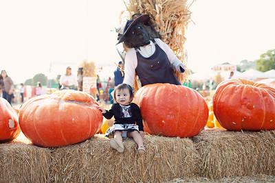 Alison Pumpkin Patch 2013