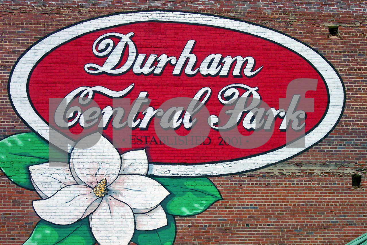 100_3074_Durham_Central_Park 12x18