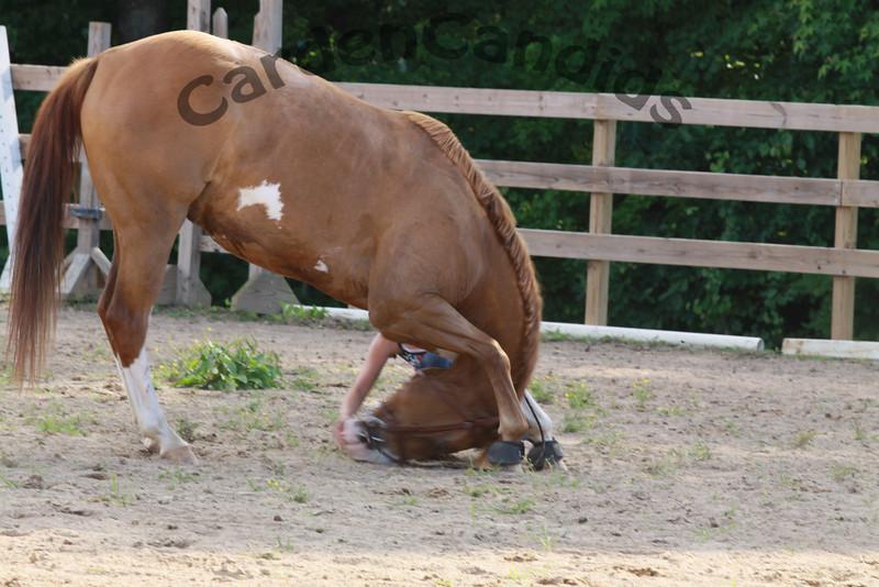 4H Sassy Saddles, Horse Back Riding, Photos by CardenCandids Photography, Mocksville NC