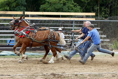 Four Town Fair Pony Pulls