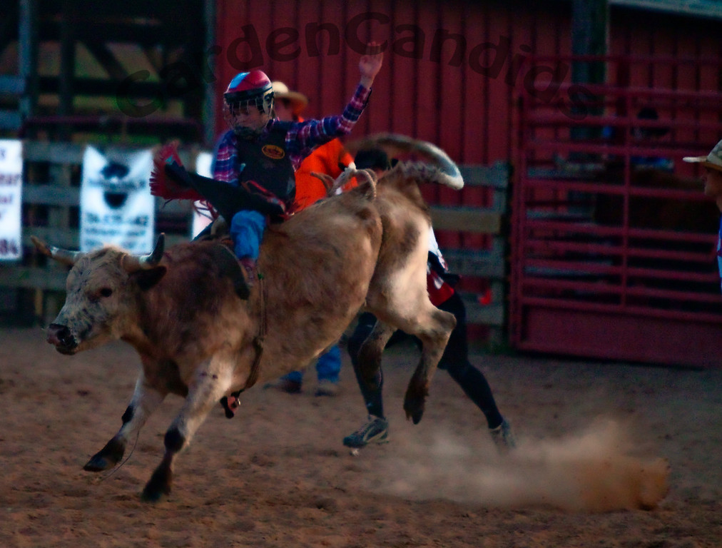 Tri-State Rodeo, Youth Rodeo, NC, Copyright CardenCandids Photography, Mocksville NC #DPSACTION