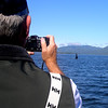 Killer Whales - Near Yes Bay Alaska - Taken with an Olympus C-765 Ultra Zoom camera.