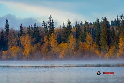 Tezzaron Lake