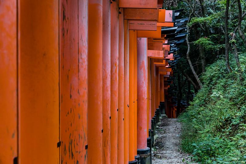 Kyoto_102019_99