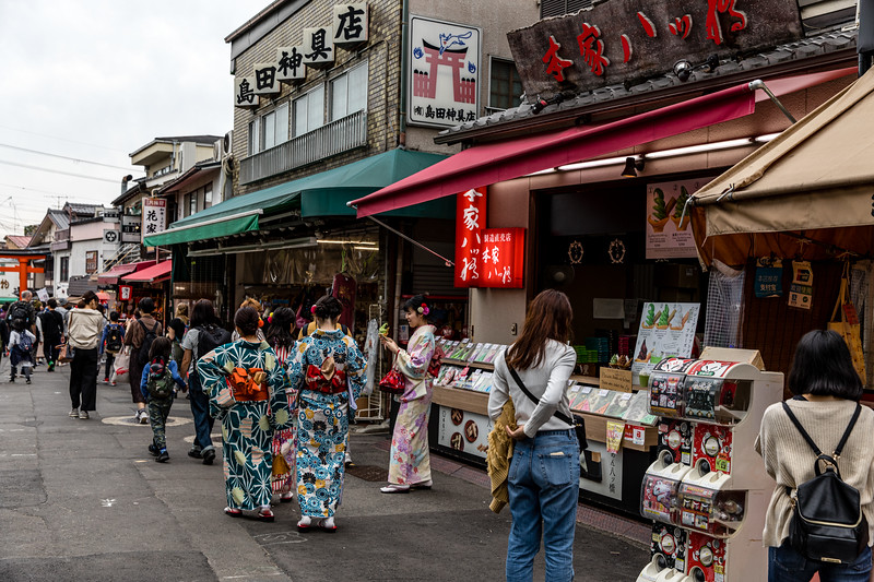 Kyoto_102019_113