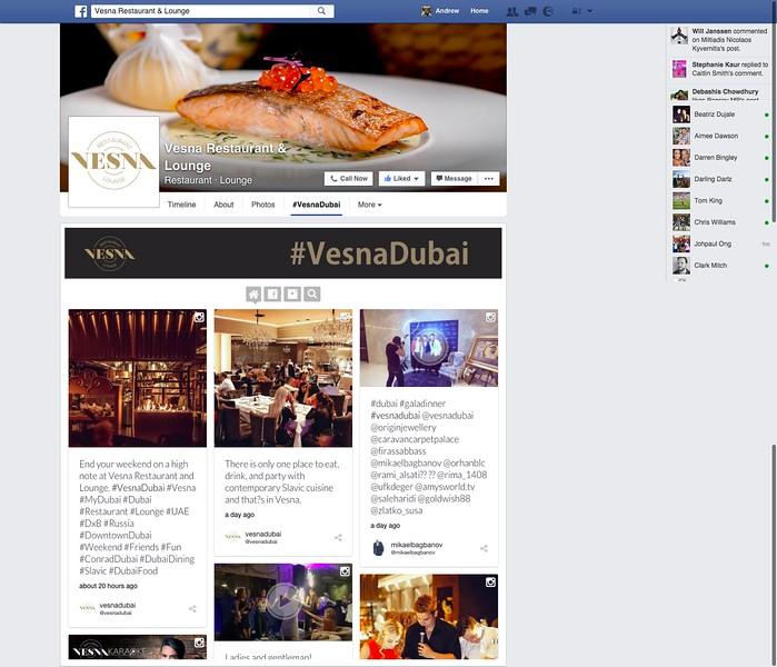 Vesna Facebook
