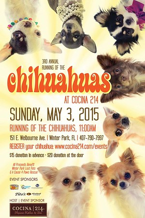 Cocina 214's Block Party and 3rd Annual Running of the Chihuahuas