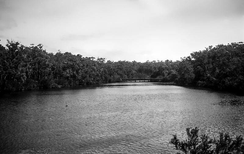 Blackwood River?