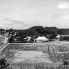 Tentland Rottnest