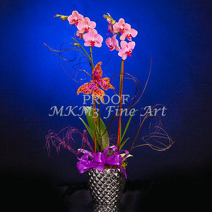 Pictures of Flower Arrangements Fine Art Photograph Prints 3840.02