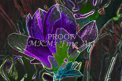 Wall Art Tulip Tree Dark Drawing 1806.806