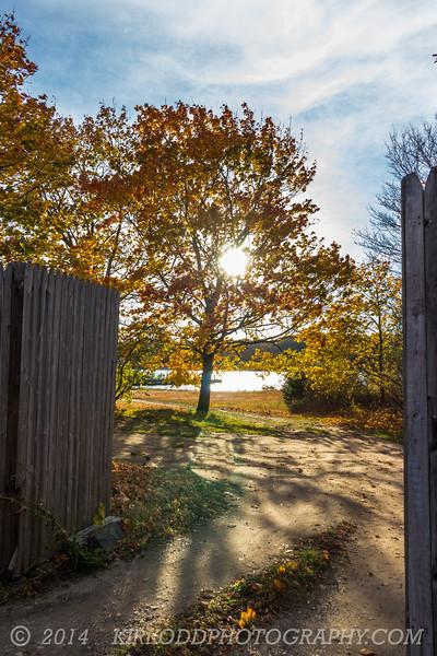 Fall Through the Gate