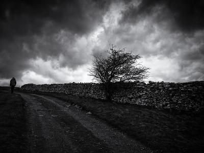 The High Lane