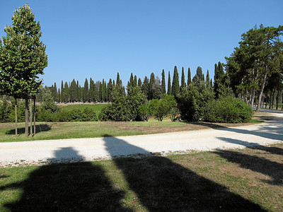 Avignonesi Vineyards, Montepulciano, Italy 2006