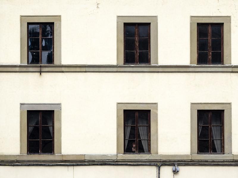 Woman at Window