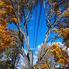 Autumn Power Lines