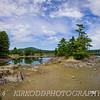 Pine Tree Island - Blue Hill,