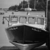 Naskeag Point - Brooklin ME Alternate 2