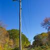 Power Line Highway In Autumn