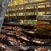 Autumn Colors: Sawmill Bridge