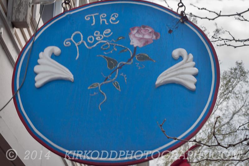 The Rose in Mystic, CT