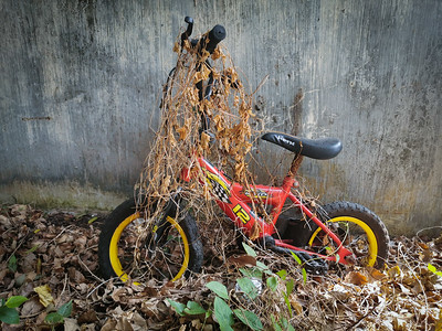 Abandoned Child's Bike