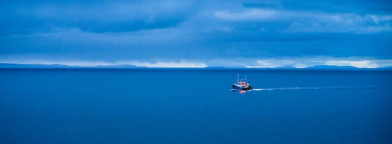 Night Trawler