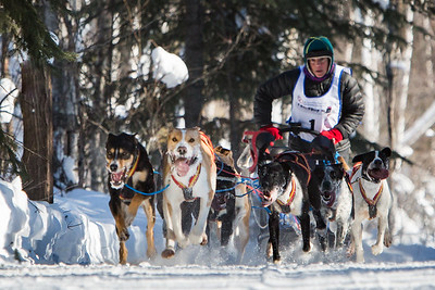 """Week #2, 2017 Project 52 – """"2017 GCI Open North American Sled Dog Championships…"""""""