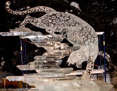Ice Alaska 2012