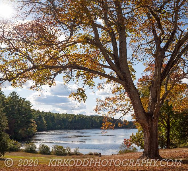 Browning Mill Pond - Arcadia - Hope Valley, RI