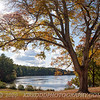 Browning Mill Pond - Arcadia - Hope Valley, RI