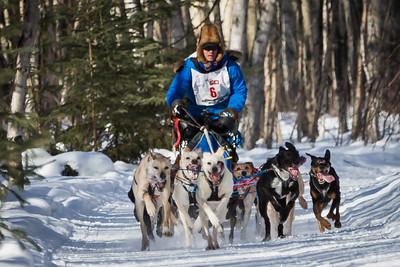 Week #1, Project 52 - 2014 Open North American Sled Dog Races