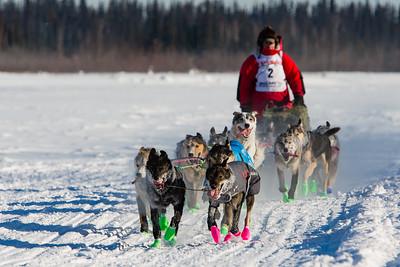 2017 Iditarod - Teams & Mushers