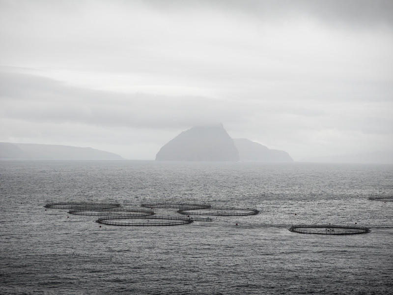 """Taking the bus from the airpot to Tórshavn, the capital, I could immediately see from the scenery that this was somewhere a bit different.   The two islands in the distance are Hestur (""""Horse"""") and Koltur (""""Colt""""). The rings are salmon farms, I think."""